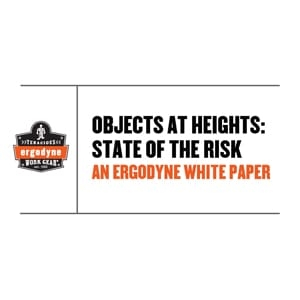 Objects at Heights State of Risk - White Paper